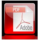 icon-pdf-download